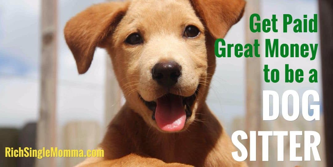 Get Paid Great Money to be a Dog Sitter