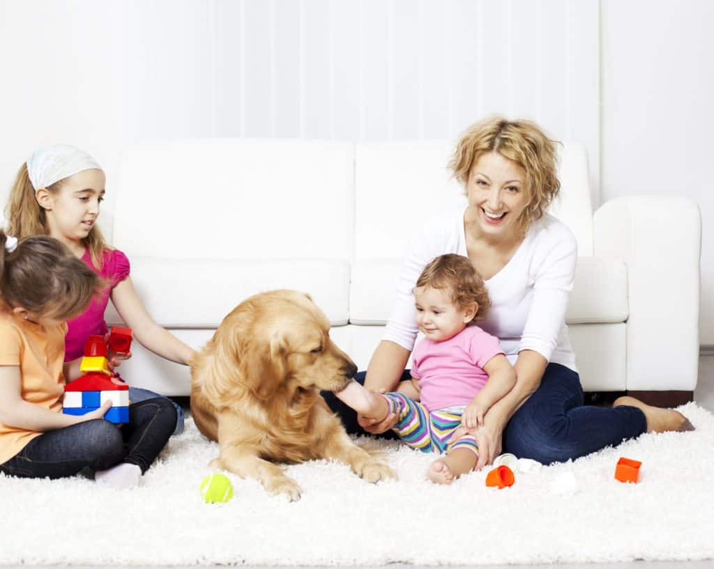 mom pet owner carpet cleaning tips